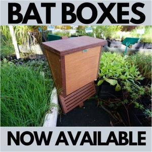 Nesthouses Bat boxes