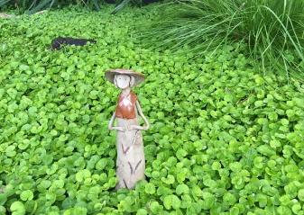 Garden_Category 02